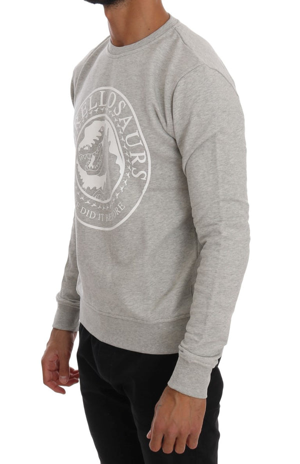 Gray Cotton Crewneck Pullover Sweater