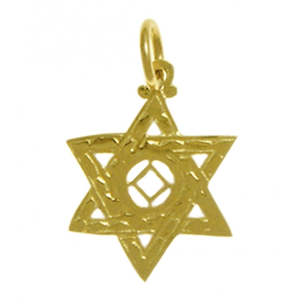 14k Gold Pendant, Narcotics Anonymous Symbol in a Jewish Star of David, Medium Size - Style #569-10