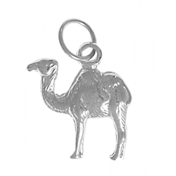 "Sterling Silver Pendant, Adorable Camel ""Can go 24 Hours without a Drink"" - Style #69-16"