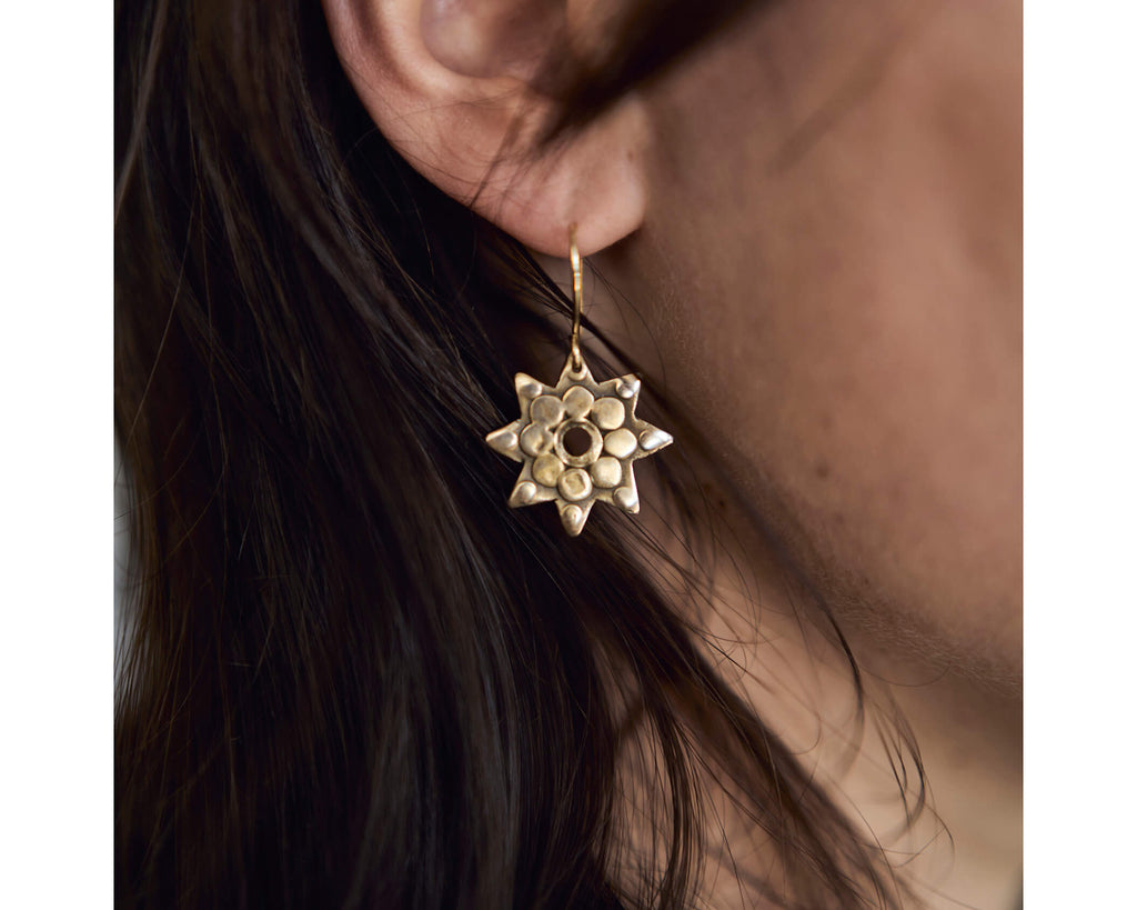 Stars of Aspiration earrings -Bronze