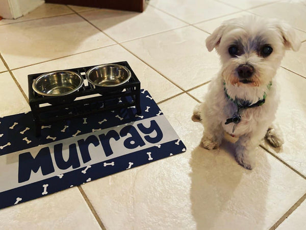"Personalized Pet Placemat - 12"" x 18"""