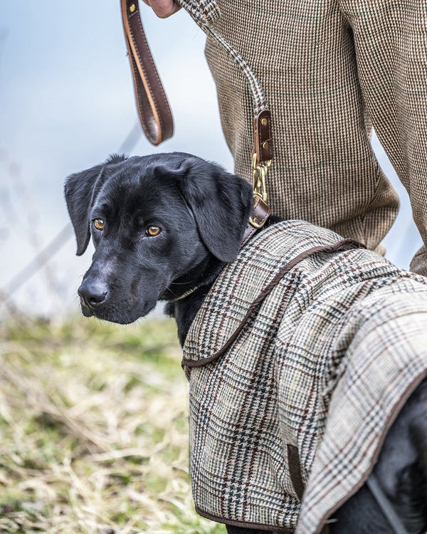 The Fife Arms Tweed Dog Coat