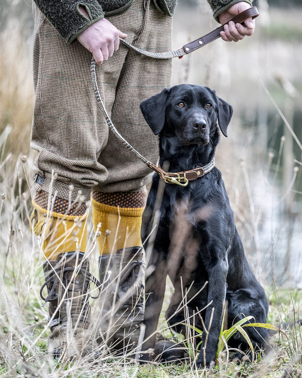 The Fife Arms Tweed & Leather Dog Lead