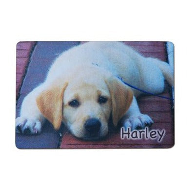 PERSONALIZED FOOD PLACEMAT  12