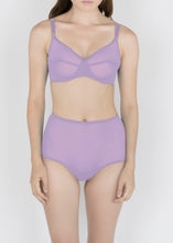 Load image into Gallery viewer, Sheer Essential Pastels - High Waist Brief - DEBORAH MARQUIT