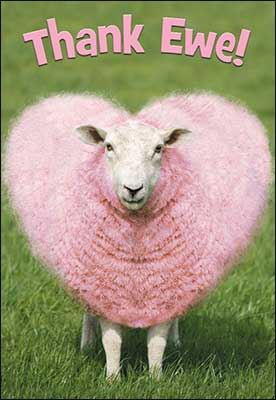 Sheep Has Heart Shaped Pink Wool