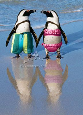 Penguins Holding Hands