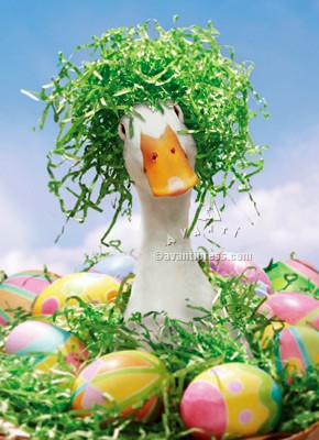 Duck w / Easter Grass Wig Funny / Humorous Goose Easter Card