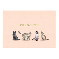 Boxed Notecards Cat Thank You
