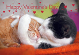 Valentines Day Pair Of Cats Snuggling