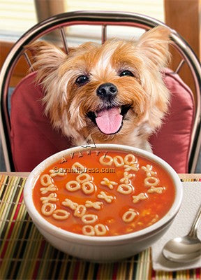 Dog  Get Well Soup 202646