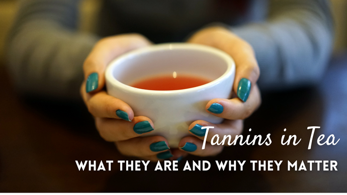 Tannins in Tea: What They Are and Why They Matter