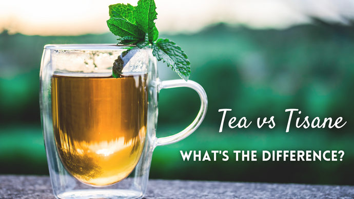 Teas vs. Tisanes: What's the Difference?