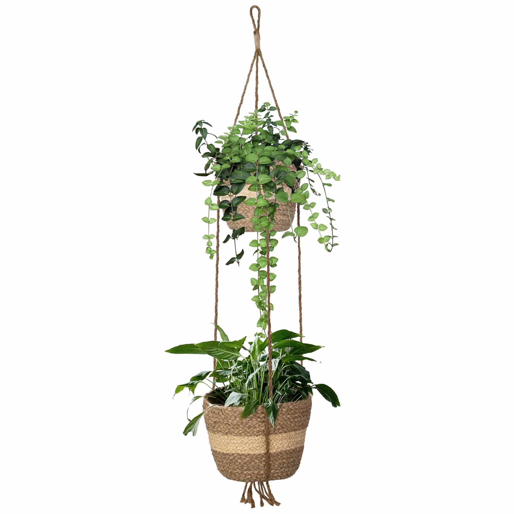 Made Terra Planter Hanger Natural Stripe 2 Tier Woven Hanging Plant Pot Cover Seagrass Wicker Wall Hanging Planter Basket for Flower Pot, Indoor Outdoor Garden Balcony Home Decoration (Natural)