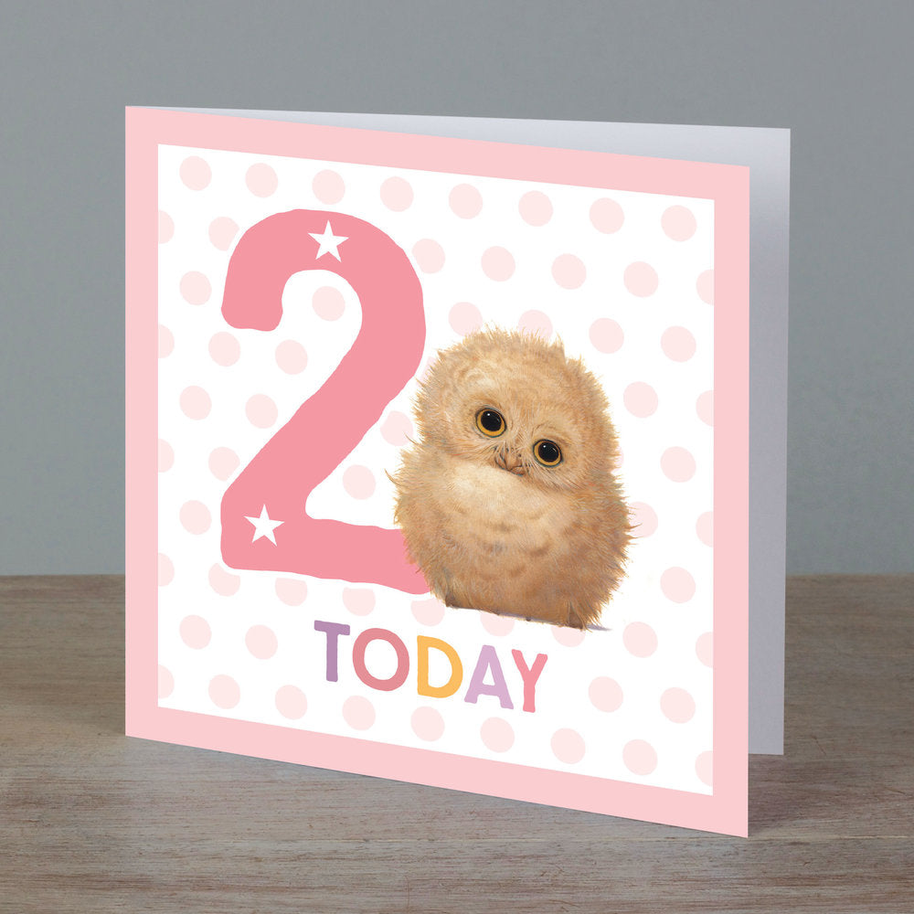Square birthday card with baby owl in front of '2 today' pale pink colour