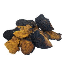 Load image into Gallery viewer, Chaga Chunks (Wild Harvested, Raw + Sun Dried)