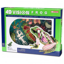 Load image into Gallery viewer, 4D Vision Frog Model