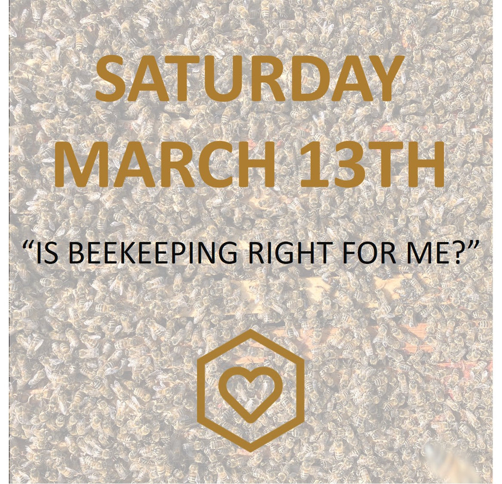 "NEW! ""Is beekeeping right for me?"" MARCH 13TH ONLINE"