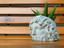 Load image into Gallery viewer, ZEUS FACE PLANTER  - Zeus Head Planter - Head Planter - Sculpture Planter - King of Gods - Home Decoration - Home Decor - betonven