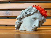 Load image into Gallery viewer, ALEXANDER FACE PLANTER - Alexander The Great  - Head Planter - Sculpture Planter - Alexander Macedonia - Home Decoration - Home Decor - betonven