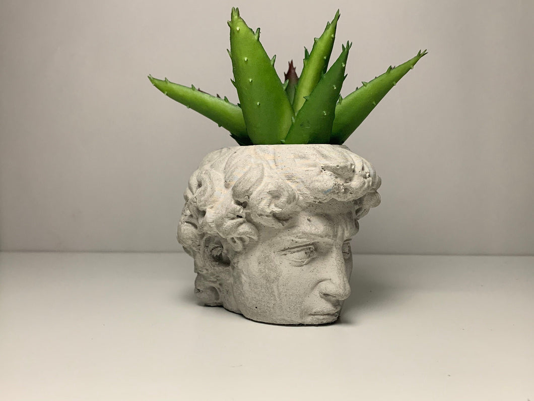 DAVID FACE PLANTER  - David Head Planter - Head Planter - Sculpture Planter - Michelangelo - Home Decoration - Home Decor - betonven