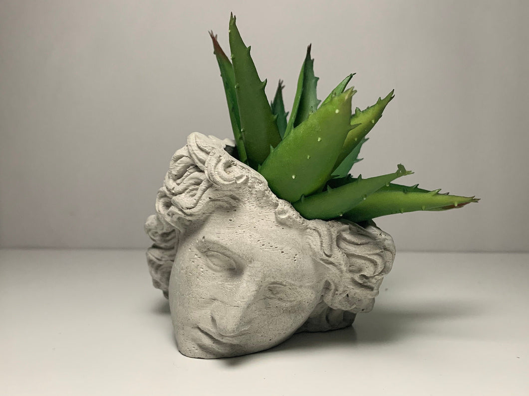 ALEXANDER FACE PLANTER - Alexander The Great  - Head Planter - Sculpture Planter - Alexander Macedonia - Home Decoration - Home Decor - betonven