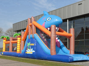 Inflatable slides manufacturers rent inflatable slides
