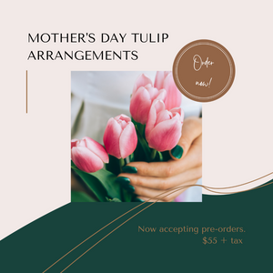 Mother's Day Tulip Arrangements