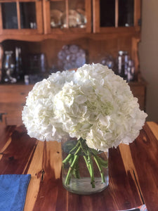 Hello, Honey Hydrangea Floral Design