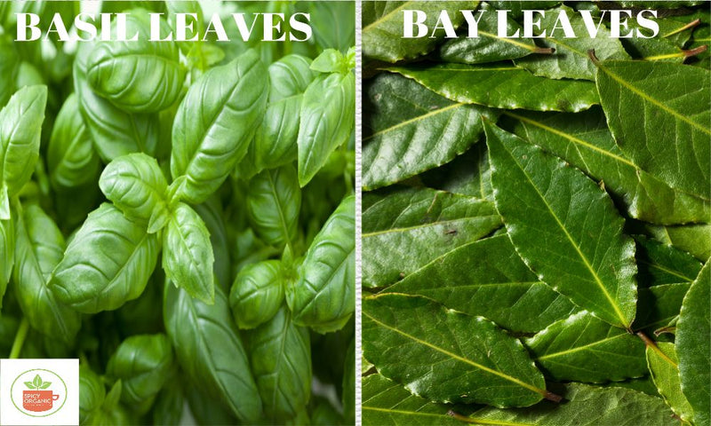 Are Bay Leaves the same as Basil Leaves?