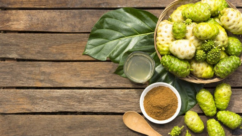 Tropical noni fruit has antioxidant, anti acne and anti aging benefits in skincare