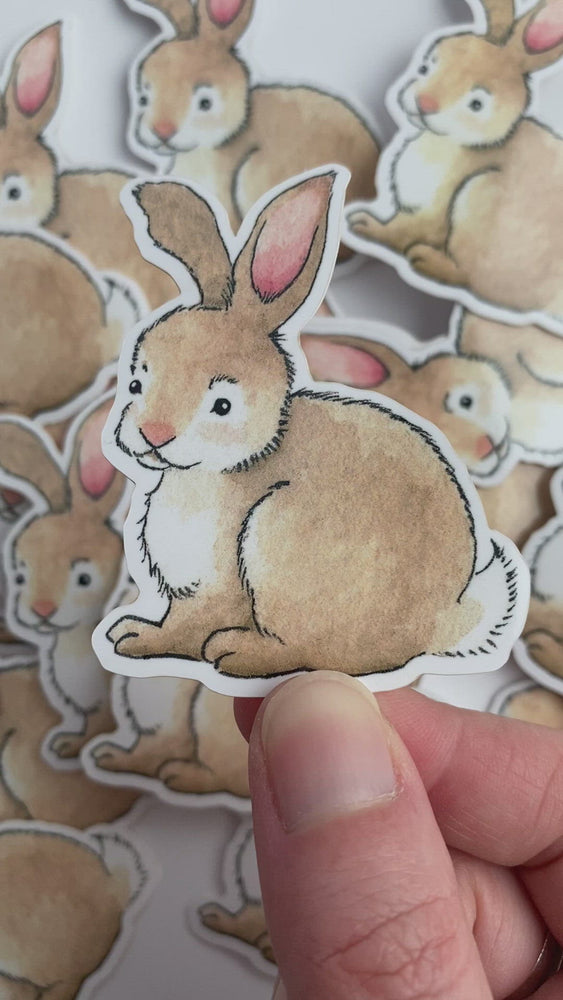 Load and play video in Gallery viewer, Sitting Bunny Sticker - Vinyl Sticker