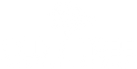 Old Tree Furniture Co