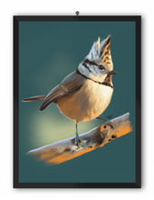 Load image into Gallery viewer, Crested Tit Bird Art Print