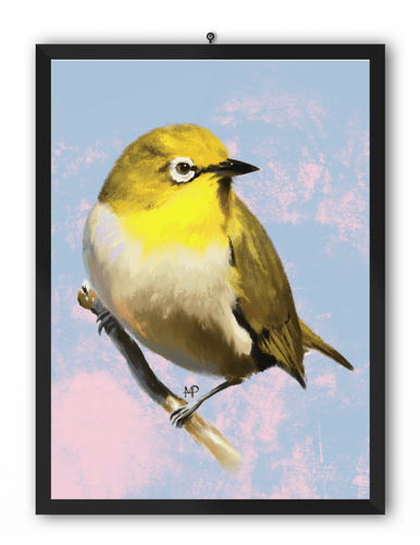 Indian White-Eye Bird Art Print