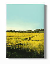 Load image into Gallery viewer, Sunlit Cornfield Scenery Canvas Art