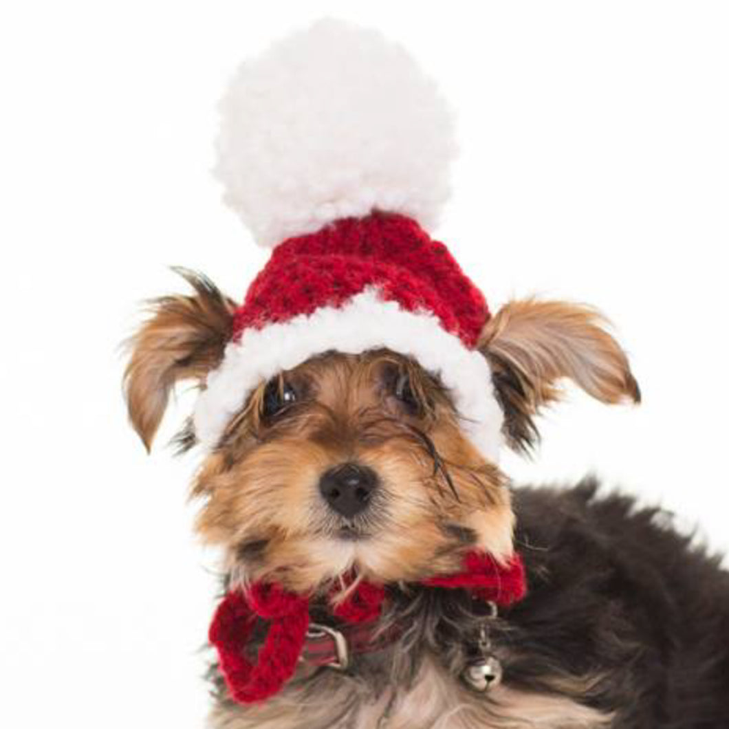 Traditional Santa Hat for Toy Dogs