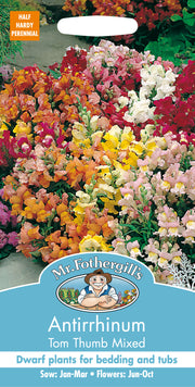 Mr Fothergills Antirrhinum Tom Thumb Mixed