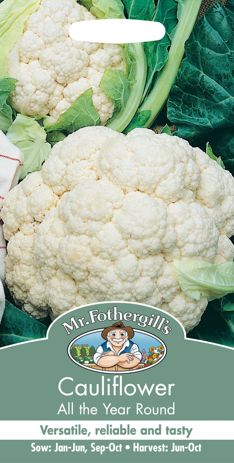 Mr Fothergills Cauliflower All The Year Round Seeds