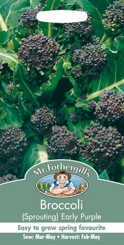 Mr Fothergills Broccoli (Sprouting) Early Purple