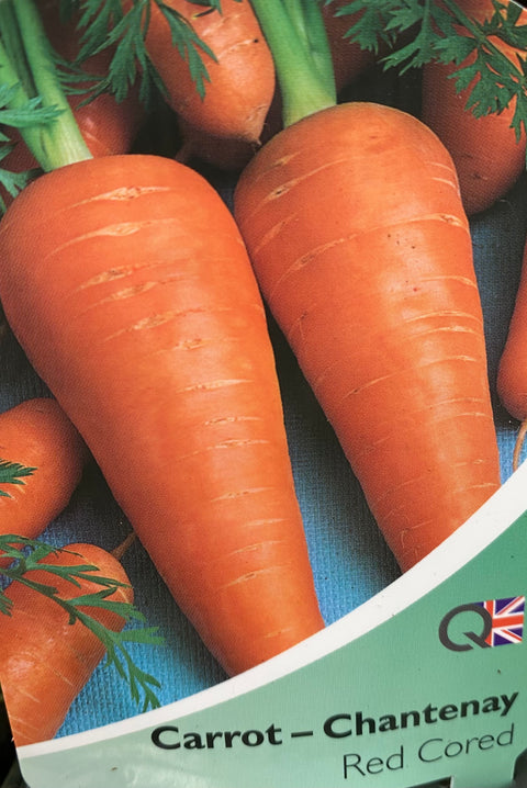 Carrot Chantenay - Red Cored - Strip