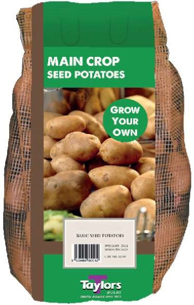 Main Crop 2kg Seed Potatoes Golden Wonder