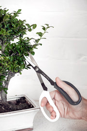 Japanese Pruning Scissors