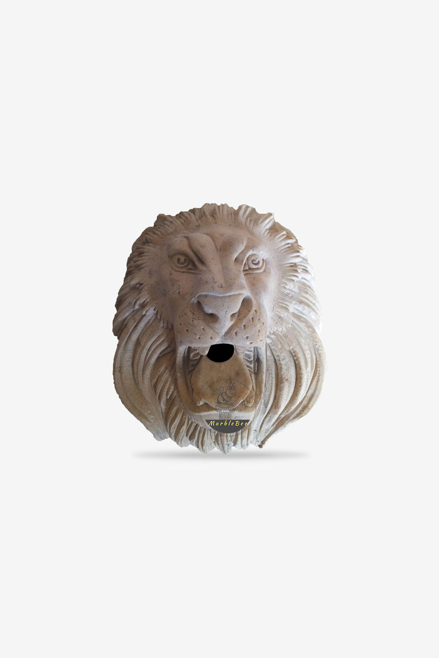 Large wall fountain lion head faucet