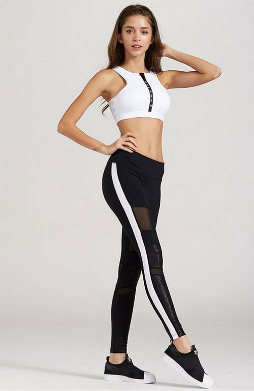 Mult-Panel Mesh Block Leggings