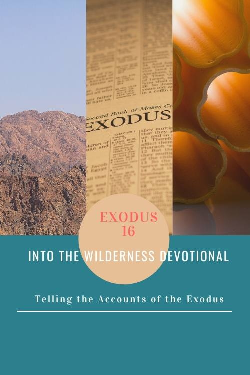 Into the Wilderness Devotional