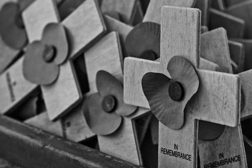 "alt=""remembrance crosses show that freedom comes with a price"""