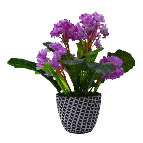 Artificial Flower Kali in Texture Pot