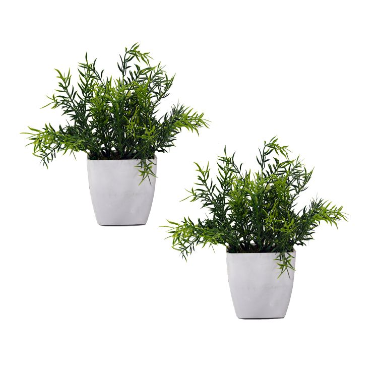 Artificial Spery Grass with Pot - (Set of 2)