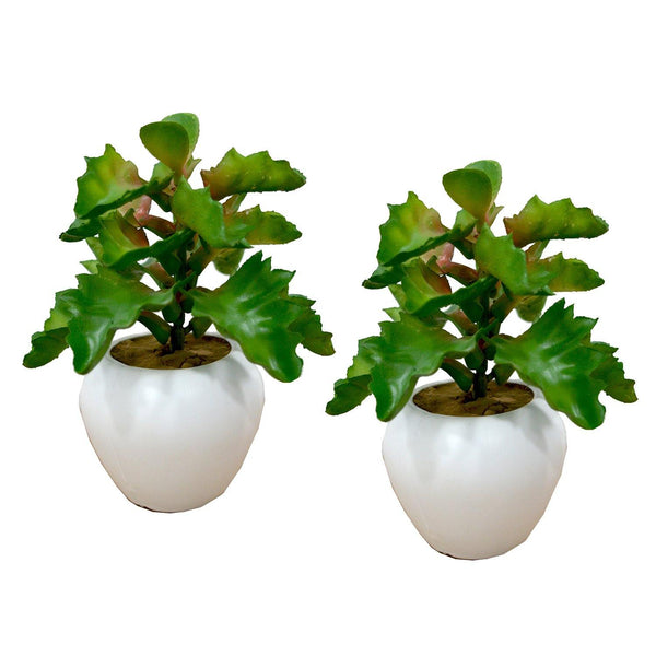 Artificial Cactus plant ( single piece ) with small apple pot - Fancy Mart